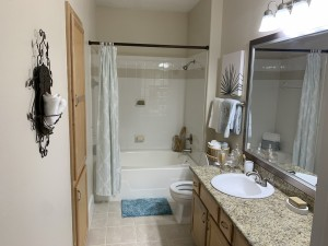 1 Bedroom Apartments for rent in Southwest Houston, TX - Model Bathroom (2)