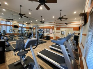 1 Bedroom Apartments for rent in Southwest Houston, TX - Fitness Center